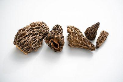 Morille séché bio en vrac, un champignon de la marque Supersec