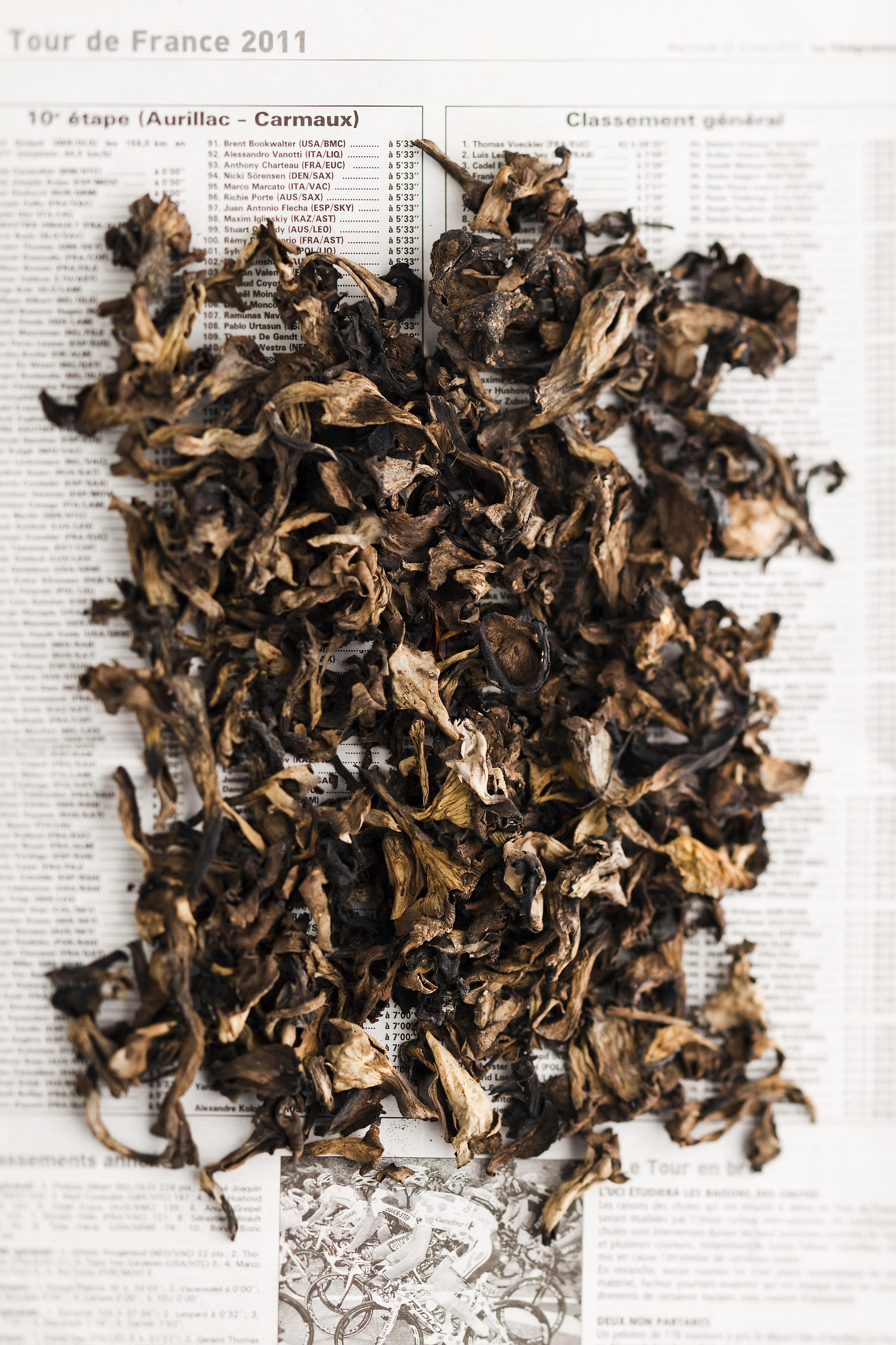 Trompette de la mort, l'un des champignons séchés bio de Supersec
