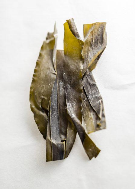 Kombu breton en vrac, une algue bio séchée par Supersec